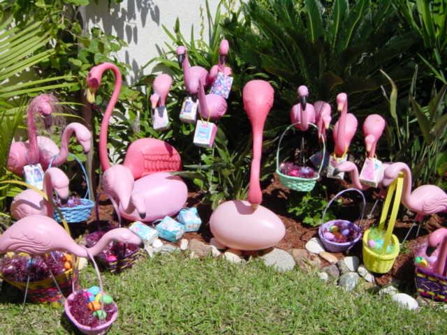 Flamingo Easter Eggs Flamingo Eggs